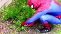 Frozen Elsa Anna lose their hair Spiderman Maleficent Funny Superheroes in real life