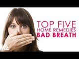 How To Cure Bad Breath | Top 5 Home Remedies For Bad Breath | Simple Health Tips