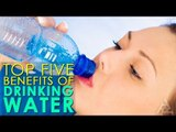 Top 5 Benefits Of Drinking Water | Best Health And Beauty Tips | Lifestyle