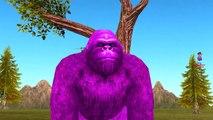Colors Gorilla Vs Elephant Finger Family Nursery Rhymes | Gummy Elephant Vs Gummy Dinosaurs
