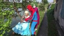 Life of Pets Spiderman vs Elsa vs Joker dog training Fun Superheroes