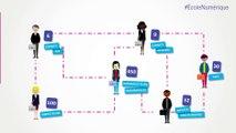 Animation des réseaux numériques