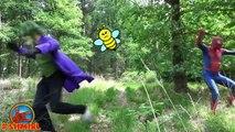 Spiderman vs BEES w Joker and Hulk Bees Spiderman in Real Life Superhero Movie SHMIRL