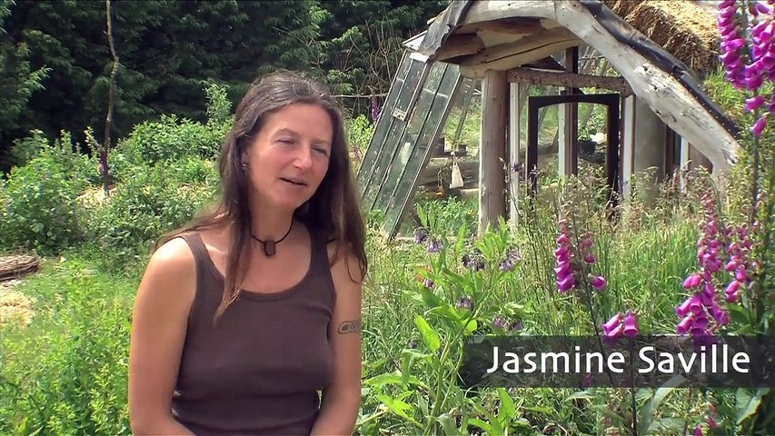 How to build an ecovillage community