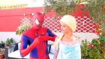 Frozen Elsa has Rainbow Hair w Pink Spidergirl Batman Dog Catwoman Fun superheroe in real life
