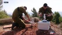 Israël - Drone : toujours plus petit, toujours plus précis