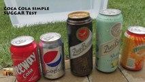 Coca Cola vs Pepsi Cola vs Fanta vs Beer - Science Experiments with Coca-Cola