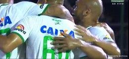 Botafogo vs  Chapecoense  kempes Goal - Botafogo X Chapecoense Gol de kempes 35ª Rodada do Brasileirão 16-11-2016 (HD)