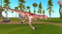 Flying Dinosaurs Mega Collection   Big Dinosaurs Short Movie   Dinosaurs Cartoon