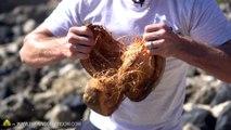Comment ouvrir des noix de coco sans outils... Facile !