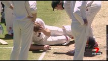 Adam Voges Hit by Cricket Ball in Sheffield Shield match at the WACA