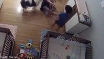 Cet enfant sauve son petit frère qui va chuter de la table à langer... Héro du jour