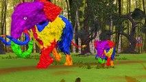 Colors Dinosaurs Gorilla Finger Family | Colors Gorilla Vs Elephant Finger Family Nursery Rhymes
