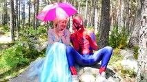 Frozen Wants Peppa Pig Toys! w/ Spiderman Rainbow Bubble Gum Candy, Superman & Hulk vs Shark