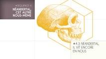 MOOC Les origines de l'Homme, Séquence 4.3. Néandertal, il vit encore en nous