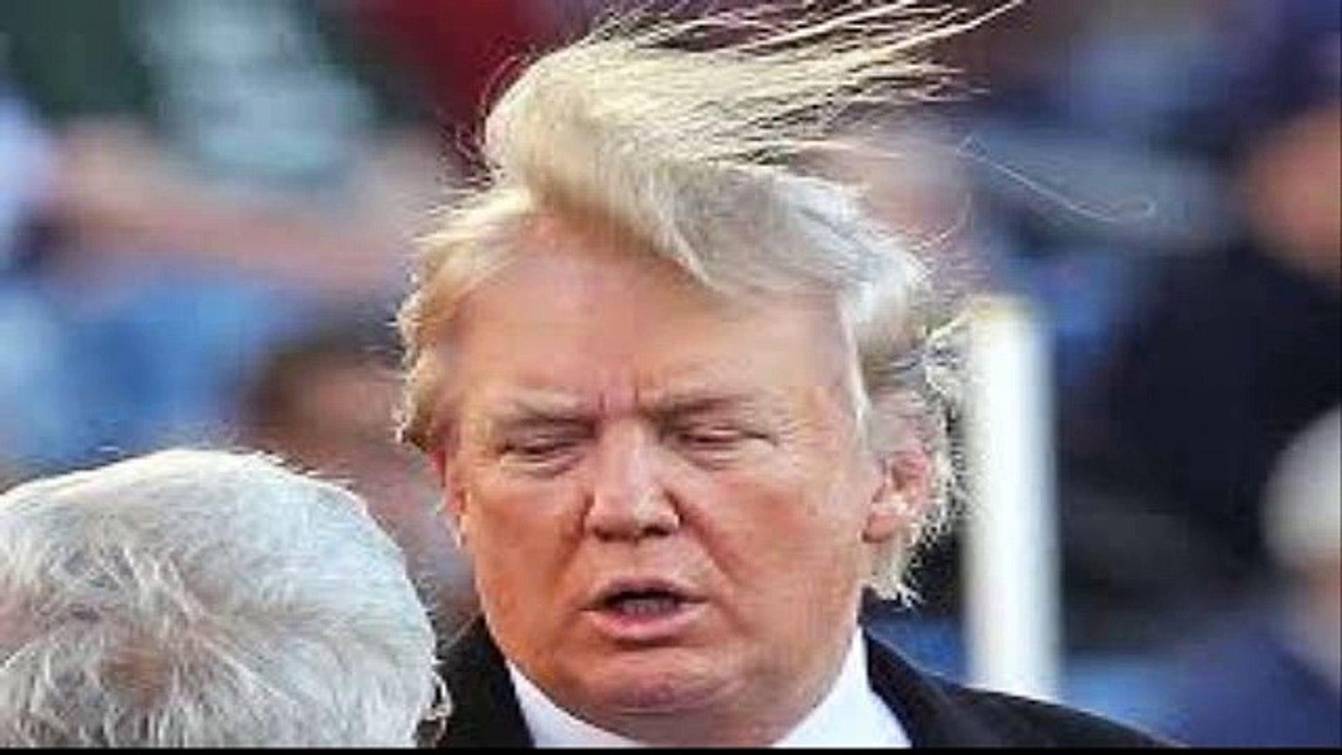 Donal Trump - Hair Trump