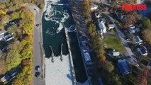 À New York, un canal recouvert par des milliers de poissons morts