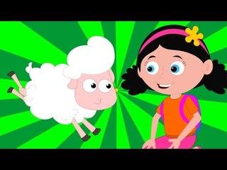 mary had a little lamb | nursery rhymes | childrens songs | baby rhymes | kids videos