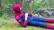 SPIDERMAN LOSES HIS DOG / PUPPY Spider-Man Fun Superheroes Movie in Real Life 2016 Spiderman Movie