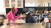 Cooking Pancakes with Pink Spidergirl, Joker and Venom part4