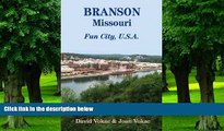 Buy  Branson, Missouri: Travel Guide to Fun City, U.S.A. for a Vacation or a Lifetime David Vokac