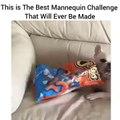 Le mannequin challenge le plus cool : un chien et un paquet de chips