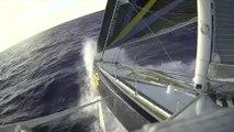 J14 : Toujours plus vite, toujours plus de bruit pour Sébastien Josse / Vendée Globe