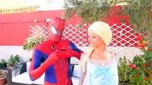 Frozen Elsa has Rainbow Hair w/ Pink Spidergirl, Batman Dog Catwoman & Fun superheroe in real life