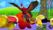 Learn Names Of Fruits And Vegetables | Kids learning fruits vegetables | Preschool Learning