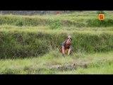 Mena Ghasyari Singer Kundan Singh Koranga By swagatfilms