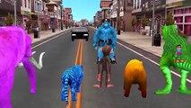 Colours Animals Dinosaur Go To Jail | Animals Arrested Police Gorilla | Funny Animals Videos