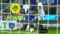 SC Bastia - Montpellier Hérault SC (1-1)  - Résumé - (SCB-MHSC) / 2016-17
