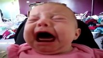 Funny videos of baby, can't stop laughing.. must watch
