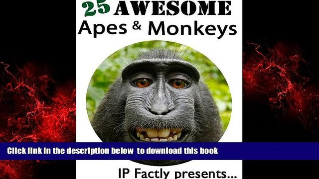 liberty book  25 Awesome Apes and Monkeys! Amazing facts, photos and video links to some of the