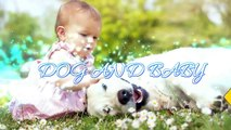 Baby Playing with St Bernard Dog A Beautiful friendship - Dog loves Baby Compilation