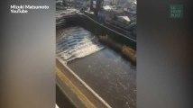 Un séisme et un tsunami frappent la région de Fukushima