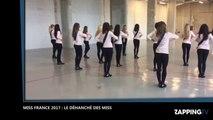 Miss France 2017 : Découvrez le déhanché très sexy des Miss (Vidéo)