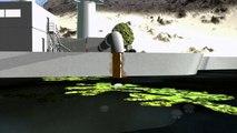 A invasão das águas-vivas