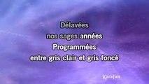 Jean-Jacques Goldman - Entre gris clair et gris foncé [Version LIVE] KARAOKE / INSTRUMENTAL