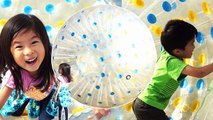 Zorb Ballz Zorbing! Get inside giant ball to roll over.
