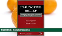 READ BOOK  Injunctive Relief: Temporary Restraining Orders and Preliminary Injunctions  BOOK