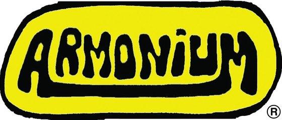 Gli Armonium alla Vita in diretta - 2004