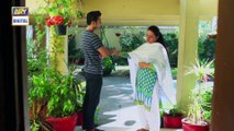 Watch Mein Mehru Hoon Episode 89 - on Ary Digital in High Quality 25th November 2016