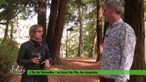 Folies Botaniques au jardin de l'île de Versailles #4
