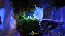 Ori and the Blind Forest (25/11/2016 19:41)