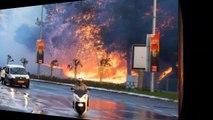 Israel fires, Israel Ptulla حرائق اسرائيل ، اسرائيل بتولع