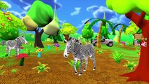Learn Animals Names & Sounds | Wild Animals Names & Sounds | Kids Learning Videos