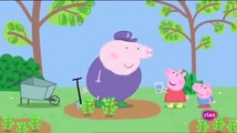 Peppa Pig en español Perfume Español