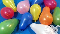 Learn Colours with Balloon Pop! Opening Surprise Balloons with Toys! Lesson 2