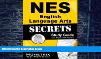 Online NES Exam Secrets Test Prep Team NES English Language Arts Secrets Study Guide: NES Test